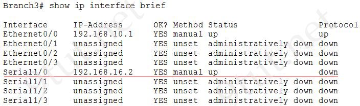 Branch3_show_ip_interface_brief.jpg