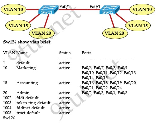 show_vlan_brief_trunk_link.jpg